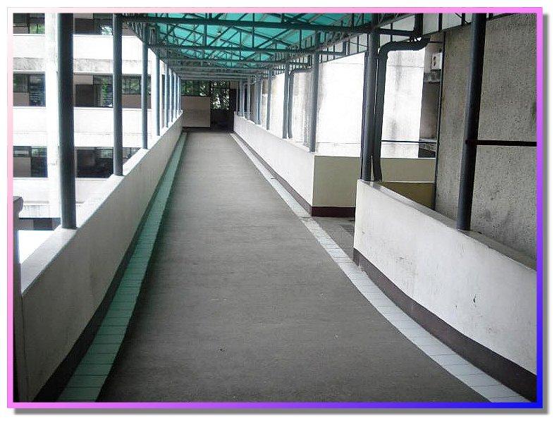 Xavier University Engineering - CIT Bridge